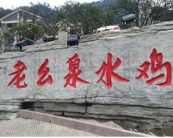 重庆最大园林餐厅老幺泉水鸡